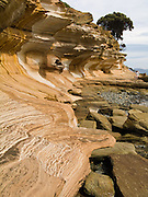 """Coastal sandstone rock patterns are exposed in the Painted Cliffs of Maria Island National Park, Darlington, Tasmania, Australia. Undercut by the Tasman Sea (South Pacific Ocean), the Painted Cliffs date from the Permian and Triassic, 300-200 million years ago. Published in """"Basic Geomorphology"""" book by Montri Choowong, Ph.D in the Department of Geology, Chulalongkorn University, Bangkok, Thailand."""