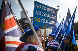 © Licensed to London News Pictures. 22/10/2019. London, UK. Anti-Brexit protestors gather outside the Houses of Parliament in Westminster on the day that MPs will vote on a reading of the Brexit Withdrawal Agreement Bill.  Last week Parliament sat on a Saturday for the first time since 1982, but failed to vote on Boris Johnson's new Brexit deal. Photo credit: Ben Cawthra/LNP