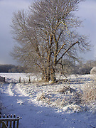 A1FNFC East Anglian winter snow country scene February 2005