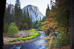 El Capitan, Merced River, Autumn colors, Yosemite National Park