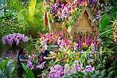 Kew Gardens Thai Orchid Festival 8th February 2018