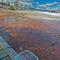 A sign warns of scalding water at Mammoth Hot Springs, Yellowtone National Park, Wyoming