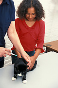 Young Girl at vets with cat having an injection, domestic, pet, aged 11 years old
