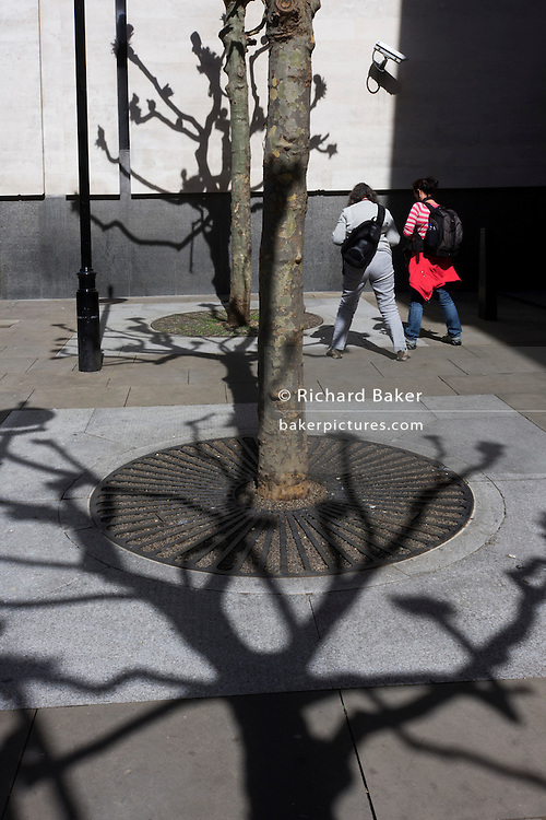 Women and shadows of bare branched trees on pavement and white wall behind National Portrait Gallery.