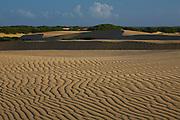Coro_VEN, Venezuela...Parque Nacional dos Medanos de Coro no Estado Falcon, Venezuela..Medanos de Coro National Park in Coro State, Venezuela..Foto: JOAO MARCOS ROSA / NITRO.
