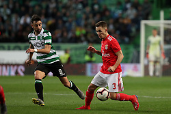February 3, 2019 - Lisbon, Portugal - Benfica's Spanish defender Alejandro Grimaldo (R ) vies with Sporting's midfielder Bruno Fernandes from Portugal during the Portuguese League football match Sporting CP vs SL Benfica at Alvalade stadium in Lisbon, Portugal on February 3, 2019. (Credit Image: © Pedro Fiuza/ZUMA Wire)