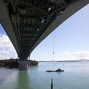 Bungy jumping from the Auckland Bridge,  Auckland, New Zealand, 8th November 2010. Photo Tim Clayton.