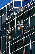 Office window cleaners.<br /> <br /> Larger JPEG + TIFF images available by contacting use through our contact page at : www.effectiveworkingimage.com