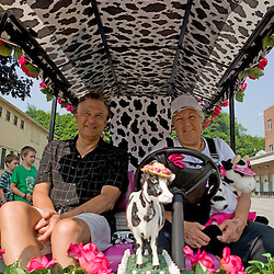 """The Strolling of the Heiffers Parade in Brattleboro.  Donald Skekel and Bette Crawford in their """"Udder Cart."""""""