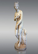 2nd century AD Roman marble sculpture of Aphrodite (Venus), 'Dresden Capitoline Type, copied from a Hellanistic Greek original,  inv 6238, Museum of Archaeology, Italy, grey background.<br /> <br /> If you prefer to buy from our ALAMY STOCK LIBRARY page at https://www.alamy.com/portfolio/paul-williams-funkystock/greco-roman-sculptures.html . Type -    Naples    - into LOWER SEARCH WITHIN GALLERY box - Refine search by adding a subject, place, background colour, etc.<br /> <br /> Visit our ROMAN WORLD PHOTO COLLECTIONS for more photos to download or buy as wall art prints https://funkystock.photoshelter.com/gallery-collection/The-Romans-Art-Artefacts-Antiquities-Historic-Sites-Pictures-Images/C0000r2uLJJo9_s0