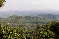 View From Gorilla Treck