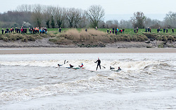 © Licensed to London News Pictures. 22/03/2019. Newnham, Gloucestershire, UK. Surfers ride the Severn Bore at Newnham. The bore this weekend is one of the highest of the year, a five star bore as the incoming tide comes up river creating a wave. Photo credit: Simon Chapman/LNP