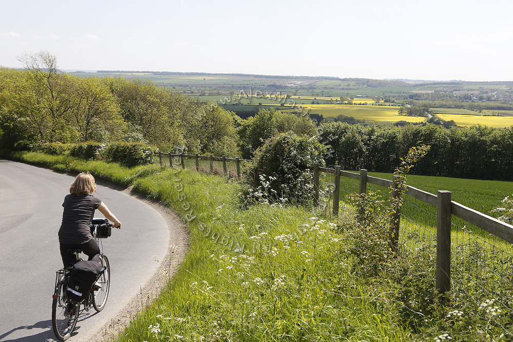 A tourist is cycling on the road towards Castle Howard, near York, Yorkshire, England, United Kingdom.