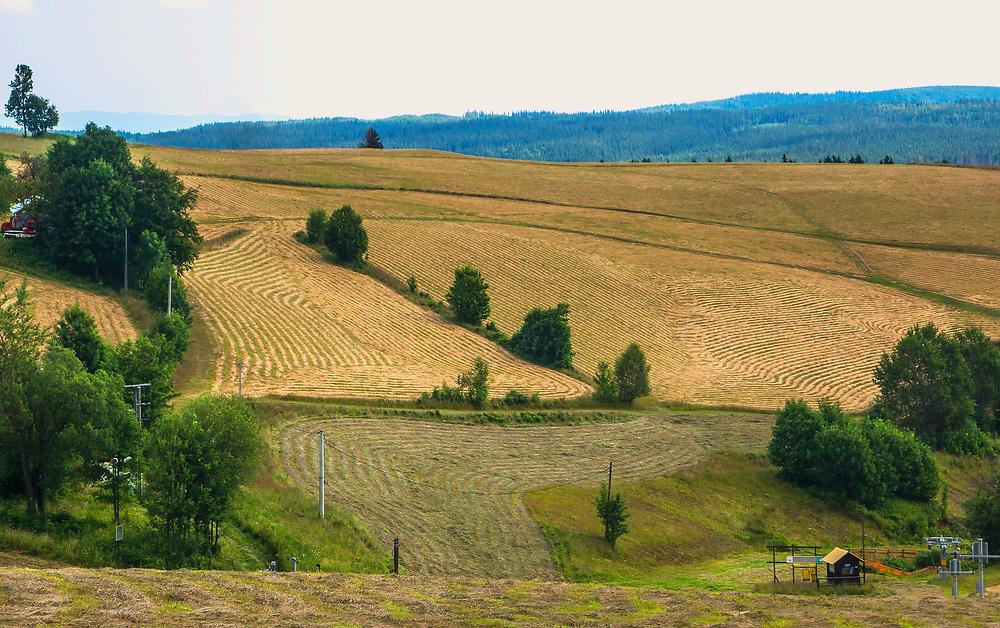 Okolice Zieleńca, dzielnicy Dusznik-Zdroju, Polska<br /> Region of Zieleniec, the quarter of Duszniki-Zdrój, Poland