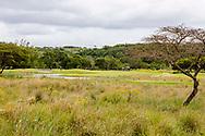 08-11-2017 Foto's genomen tijdens een persreis naar Buffalo City, een gemeente binnen de Zuid-Afrikaanse provincie Oost-Kaap. Olivewood Private Estate - Golf Club - Kleurrijke natuur