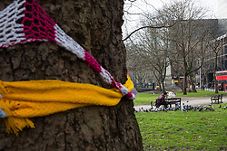 London, UK. 13th January, 2018. A plane tree in Euston Square Gardens is wrapped with a hand-knitted scarf. Activists opposed to the HS2 high-speed rail link have 'yarn-bombed' many of the more than 200 large trees in Euston Square Gardens expected to be felled to make way for temporary sites for construction vehicles and a displaced taxi rank as part of preparations for the controversial HS2 project in order to draw attention to their fate.