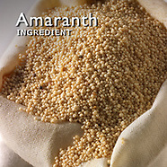 Amaranth Pictures   Amaranth Photos Images & Fotos