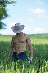 muscular shirtless cowboy in a field