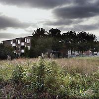 Nederland, Rijsenhout , 17 september 2009..Schiphol reserveert parallel aan de Kaagbaan een strook grond voor een tweede Kaagbaan. Het dorp Rijsenhout ligt precies in het verlengde van de ruimtereservering. Het is niet zeker dat deze baan komt, maar intussen vergrijst het dorp, verpietert de glastuinbouw en liggen lappen bouwgrond braak.In Rijsenhout staan veel sociale huurwoningen, waar veel mensen vanwege de relatief lage huurprijzen al lang wonen..Het dorp verpaupert en huizen staan lang te koop..Op de foto: het braakliggend terrein midden in een woonwijk, dat inmiddels behoorlijk verwilderd is door onkruid en kniehoog gras..The village Rijsenhout lies in a direct line of the new runway for Schiphol airport. The village impoverishes, while the plans for this runway aren't certain yet.