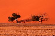 Webseite:Africa Safari 2012