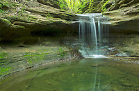 This 20 foot high waterfall in Matthiessen State Park doesn't even have a name. You have to hop across a creek and hike up a canyon to find it. The pollen on the surface of the water was continually swirling around the small pool.<br />