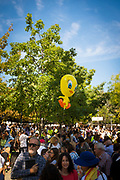Balloons in the shape Tweety bird, or Piolín the unlikely symbol of the Catalan Independence Movement in Sant Cugat. In the run up to the planned October 1st 2017 independence referendum, the Spanish government stationed police on board a ship in Barcelona port, painted with characters from Warner Brothers Looney Tunes. In response the hashtag #FreePiolin (#FreeTweety) was trending number 3 worldwide on Twitter.