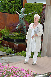 DAME JUDI DENCH at the 2016 RHS Chelsea Flower Show, Royal Hospital Chelsea, London on 23rd May 2016