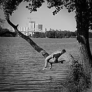 Vila på en trädgren vid Årstaviken.<br /> PHOTO © Bernt Lindgren