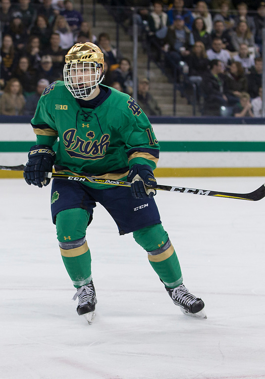 February 24, 2018:  Notre Dame forward Colin Theisen (13) during NCAA Hockey game action between the Notre Dame Fighting Irish and the Michigan State Spartans at Compton Family Ice Arena in South Bend, Indiana.  John Mersits/CSM