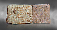 Hittite Hieroglyphic panel from a cult chamber 2 built by Suppiiuliuma II in Hattusa, Hittite New Kingdom 1207–1178 BC, Bogazkale archaeological Museum, Turkey. Grey background<br /> <br /> The Luwian hieroglyphics is a kind of hieratic script which was developed in Anatolia and has no relationship to Egyptian hieroglyphics. In these panels King Suppiluliuma II mentions that by the support of many gods he has conquered many countries including the Land of Tarhuntassa, where he has built new cities and has offered sacrifices to the gods. The chamber may have been a symbolic entrance to the underworld which plays an important part in Hittite cult and beliefs,