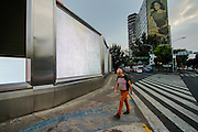 Avenida Insurgentes,  12 de noviembre de 2012. (Foto: Prometeo Lucero)