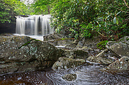 The dark water of Big Run, a tributary of the Blackwater River in West Virginia, spreads wide in the area below the falls, gently flowing between the rocks and crevices on the journey toward the river downstream.