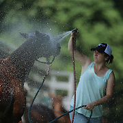 Horses get hosed down during the White Birch Vs K.I.G Polo match in the Butler Handicap Tournament match at the Greenwich Polo Club. White Birch won the game 11-8. Greenwich Polo Club,  Greenwich, Connecticut, USA. 12th July 2015. Photo Tim Clayton