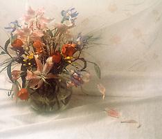 FLOWERS FAP