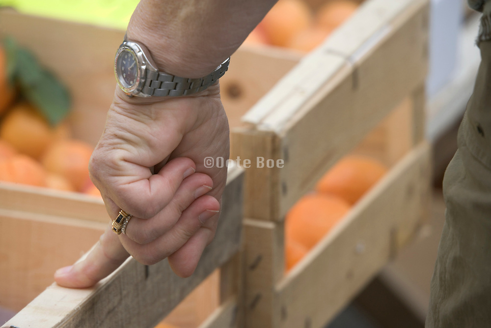 hand of a female person whom is waiting to buy fruit at a greenmarket