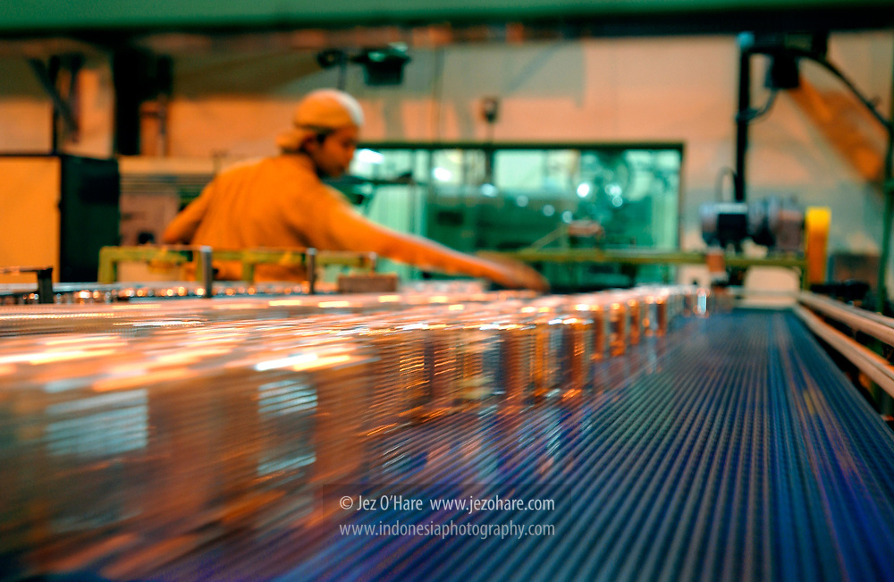 Canning factory, East Java, Indonesia