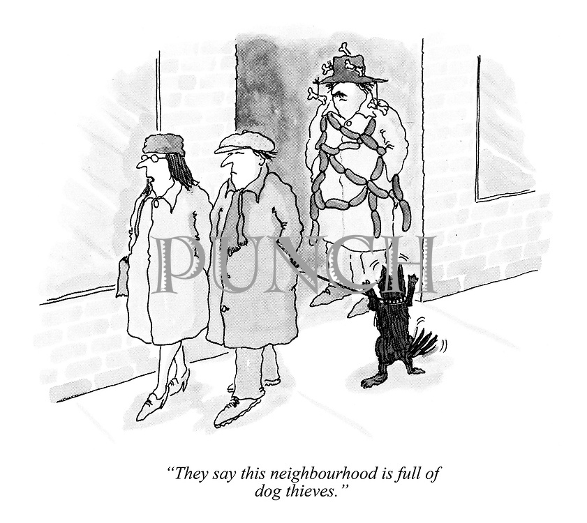 """They say this neighbourhood is full of dog thieves."""