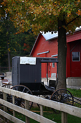 A horse and buggy are seen for sale in Berlin, Ohio, Oct. 13, 2009.