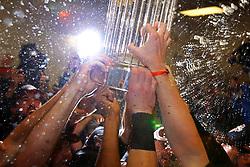 The San Francisco Giants win, 2010