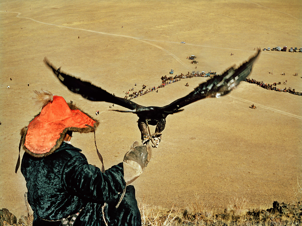 The bird is released while its owner (a speck on the right side of the image) stand below on horseback and signal for the eagle to land upon his arm, as they do during hunting.<br /> <br /> Eagle Hunting festival in Western Mongolia, in the province of Bayan Olgii. Mongolian and Kazak eagle hunters come to compete for 2 days at this yearly gathering. Mongolia