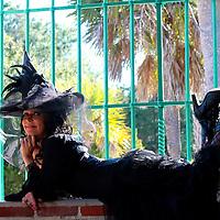 Tarot by Jennifer Fun and Sassy session with Tarot by Jennifer.  Atalaya Castle, South Carolina.
