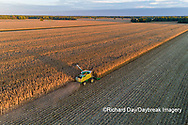 63801-12812 Harvesting corn in fall-aerial  Marion Co. IL