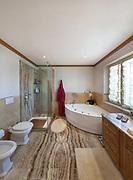 Interior of a modern house, bathroom, classic design