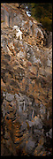 Vertical panoramic images of a mountain goat nanny perched on a rock cliff in western Wyoming.