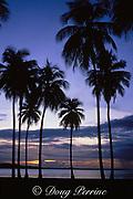 Luquillo Beach at sunset , Puerto Rico ( Caribbean Sea )