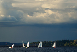 United States, Washington, Bellevue. Marina and sailboats on Lake Washington.
