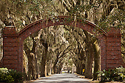 Live Oak entry to the Bethesda School for Boys Savannah, Georgia, USA.