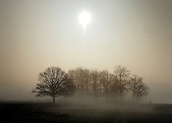 © Licensed to London News Pictures. 15/03/2012. Richmond, UK. Foggy conditions at Richmond Park this morning, 15 march 2012. The weather is expected to be good across large parts of the UK for the day.  Photo credit : Stephen SImpson/LNP