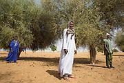 At the Border between Mali and Mauritania