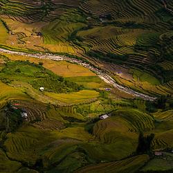 Vietnam - Van Chan Rice fields (Yen Bai Province)
